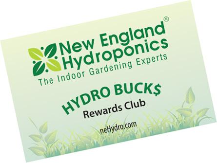 nebuckscard2.jpg